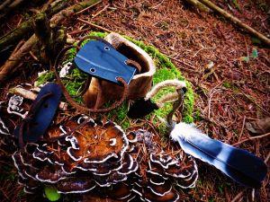 neck mil-tec dans la forêt