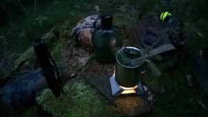 Fichtennadel-Tee