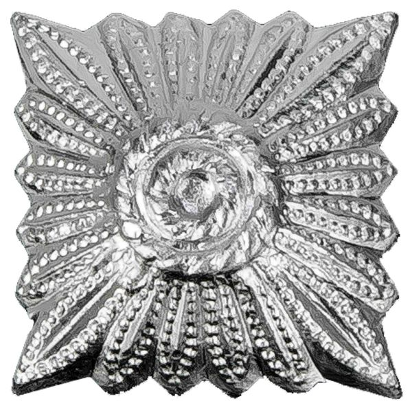 Insigne d'épaulettes Uniforme BW étoile argent