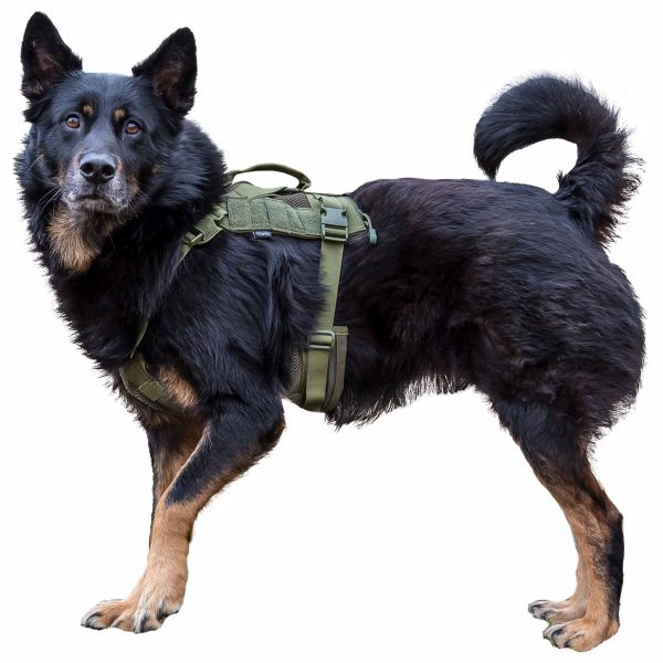 Primal Gear Harnais pour chien Tactical Dog Harness olive