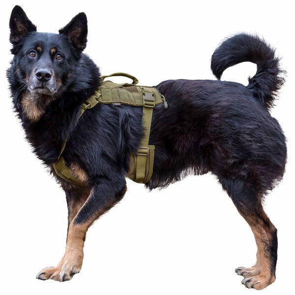 Primal Gear Harnais pour chien Tactical Dog Harness tan