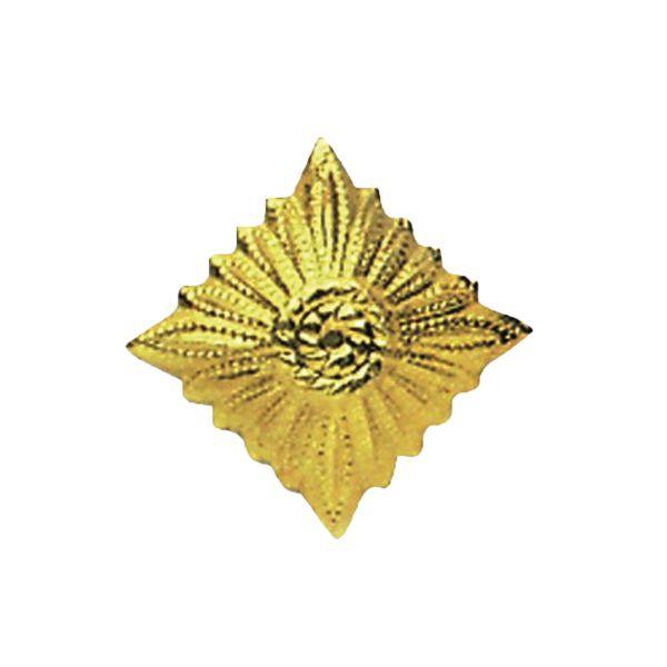 NVA Dienstgradstern or