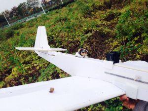 Teddy pilot