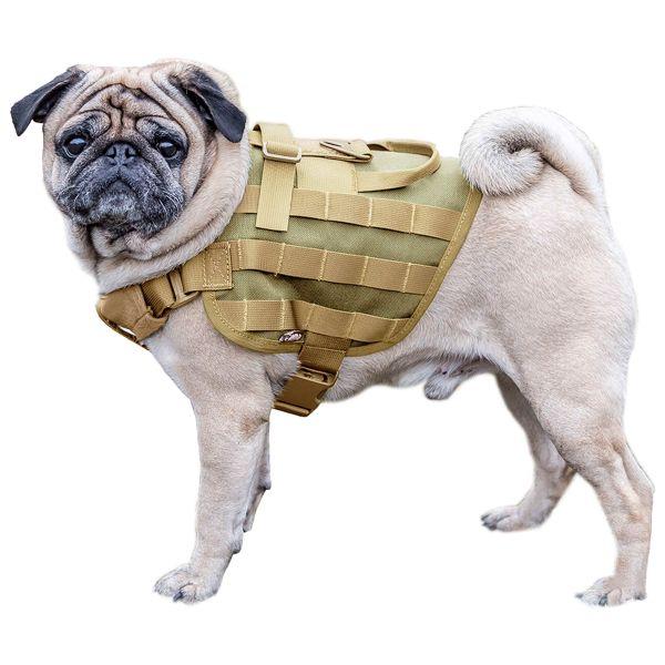 Primal Gear Harnais pour chien Light Dog Harness tan